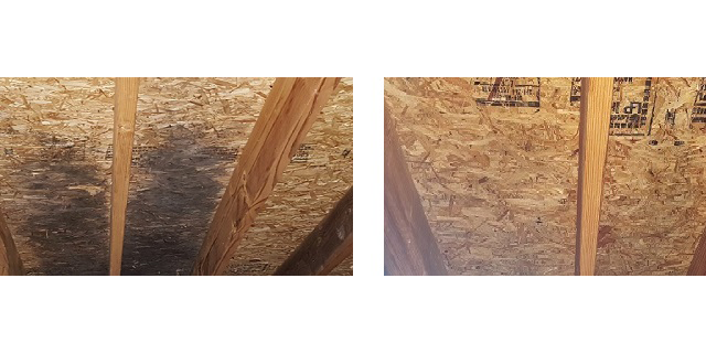 Attic image for Healthy Home Mold Services