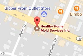 Healthy Home Mold Services Inc. on Google Maps